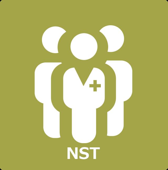 icon-nst